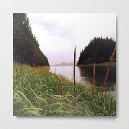 in the grass Metal Print