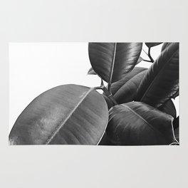 Ficus Elastica #23 #BlackAndWhite #foliage #decor #art #society6 Rug