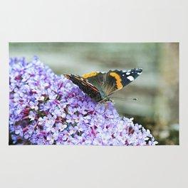 Butterfly II Rug