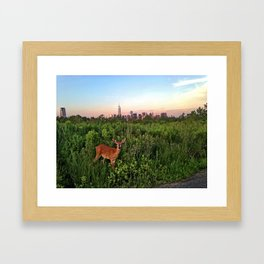The NYC Deer Framed Art Print