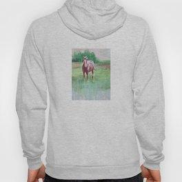 Marsh Meadow Hoody