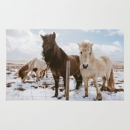 Icelandic Horses Rug