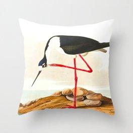 Long-legged Avocet Throw Pillow