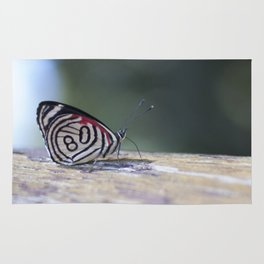 Butterfly 80 Rug