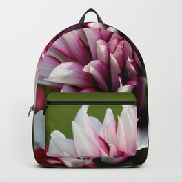 In The Summertime Backpack