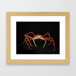 Crablegs Framed Art Print