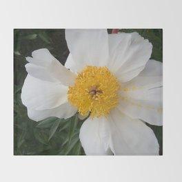 White Beauty by Teresa Thompson Throw Blanket
