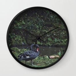 Black Swan Rain Wall Clock