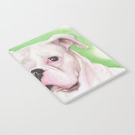 The White Boxer Notebook