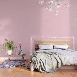 Light Soft Pastel Pink Solid Color Wallpaper