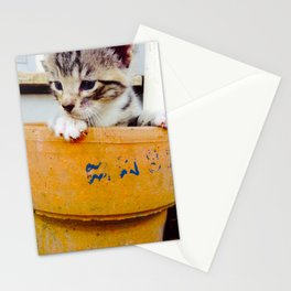 Potted kitten  Stationery Cards
