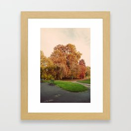 Fall in Geneva Framed Art Print