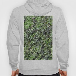 Moss Hoody
