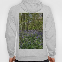 Bluebells Everdon Stubbs Wood Hoody
