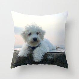 Teddy At Sunset Throw Pillow