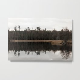 Fall lake with reed and forrest Metal Print