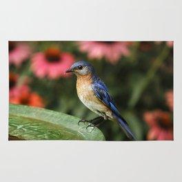 Perched Eastern  BlueBird Rug