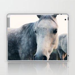 Close Up Laptop & iPad Skin