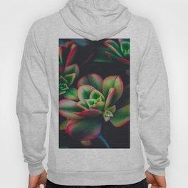 The Succulent Garden 3 Hoody