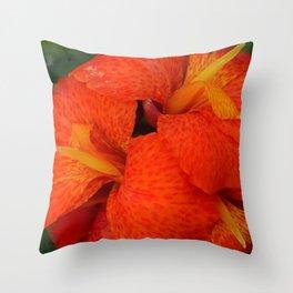Orange Canna Lily by Teresa Thompson Throw Pillow