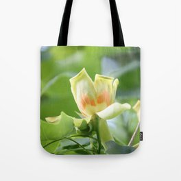 Tulip Tree - Liriodendron Tote Bag