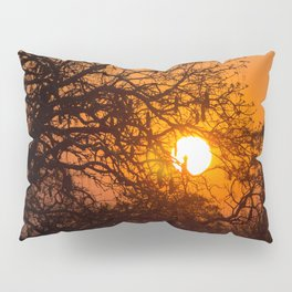 Sultry sun setting behind the sausage tree Pillow Sham