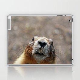 Marmot Laptop & iPad Skin