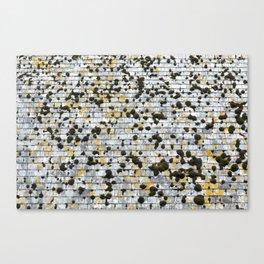 Moss on a Slate Roof Overhead Canvas Print