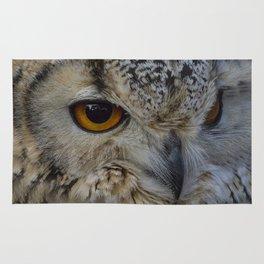 Eurasian eagle-owl, wild bird Rug
