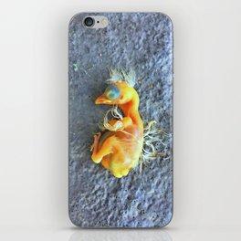 Bye Bye Birdie iPhone Skin