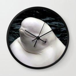 Beluga Whale Wall Clock
