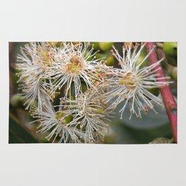 Beautiful white gum blossom Rug