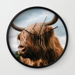 Scottish Highland Cattle - Animal Photography Wall Clock