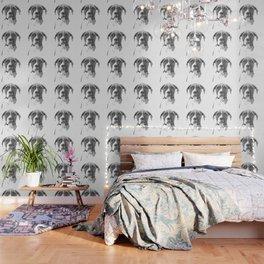 Black and White Boxer Dog Wallpaper