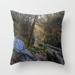 Magical Fairy Glen Throw Pillow