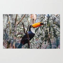 Toucan in Iguazu Falls, Argentina Rug