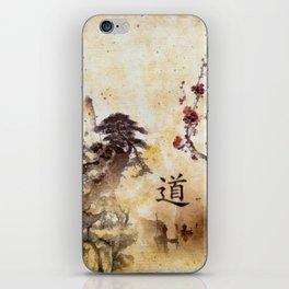 Tao Te Ching iPhone Skin