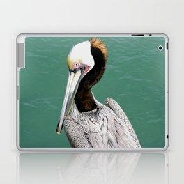 Brown Pelican Upstanding Laptop & iPad Skin