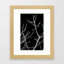 Graphic Twigs Framed Art Print