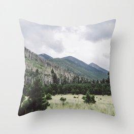 Meadow Throw Pillow