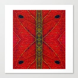 PhotoSynthesis/Leaf1030821 Canvas Print