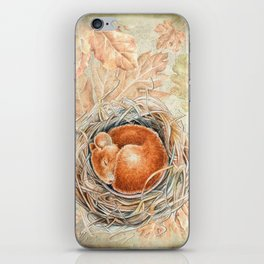 Mouse in the nest iPhone Skin