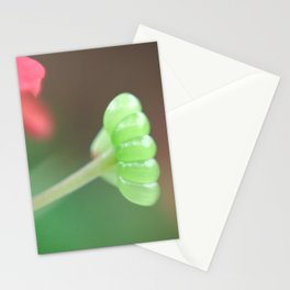 The Secret Gardem Stationery Cards