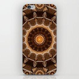 Earth Works Mandala iPhone Skin