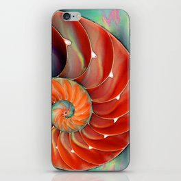 Nautilus Shell - Nature's Perfection by Sharon Cummings iPhone Skin
