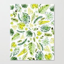 Foliage Pattern - Watercolor Canvas Print