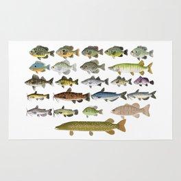 Freshwater Fish Group Rug