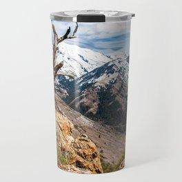 Old mountain tree Travel Mug