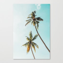 Palm Tree Beach Summer Canvas Print