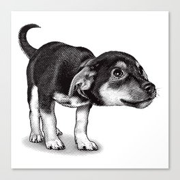 Cute cautious puppy wagging it's tail. Canvas Print